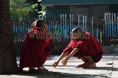 30099720 (wolfgangkaehler) Tags: 2017 asia asian southeastasia myanmar burma burmese mandalay mahagandayonmonastery mahagandayonmonastary people person monks buddhist buddhistmonasteries buddhistmonastery buddhistmonk buddhistmonks
