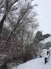 IMG_2226 (augiebenjamin) Tags: winter provocanyon mountains orem provo lindon utah snow clouds trees sky byu brighamyounguniversity art