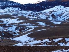 Snow Patterns (Ramona H) Tags: snow pattern abstract winter bison gardiner gardinermt yellowstone yellowstoneriver