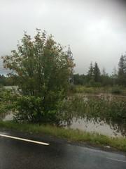Lørenskog (boldmarflakne) Tags: flom inundacion flood norge norway noruega lørenskog ノルウェー 挪威 노르웨이 norwegen norvege norja