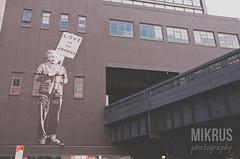 Albert on the High Line (mikrus7) Tags: urban streetart newyork einstein highline