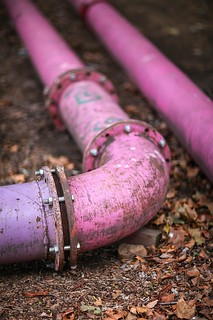 Pink Pipes of Berlin