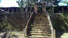Parque Ecolgico Monsenhor Emlio Jos Salim (Natal Forcelli) Tags: parque brazil caf brasil sp cana campinas fazenda amricadosul sudeste ecolgico canadeacar southamrica matodentro forcelli