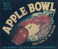 "Apple Bowl • <a style=""font-size:0.8em;"" href=""http://www.flickr.com/photos/136320455@N08/21283889478/"" target=""_blank"">View on Flickr</a>"