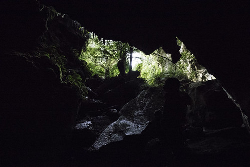 Mystery Creek Caves #6, Southwest National Park