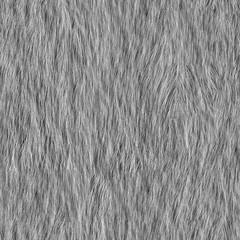 Fur_v01 (jan.schwenzfeier) Tags: white colour texture fur highresolution textures farbe fell farbig materials seamless farben weisen haare tiled weiser weise highquality weis texturen materialien textur dicht weich weises schneeweis schmutzigweis