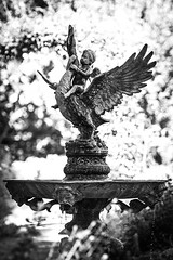 Statue of Goose Murder (wsalmons) Tags: bw white black monochrome statue bad pic well bland oh blown backgroud