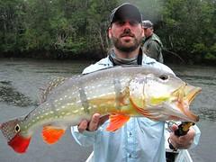 Amazonia 2012 (52)