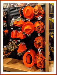 Orange Hats and Stocking Caps For Sale at Cabela's (sjb4photos) Tags: michigan hats cabelas stockingcaps dundeemichigan