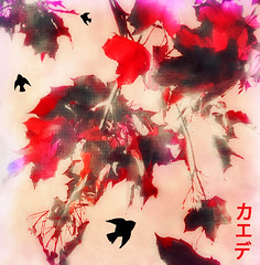 Red Maple Leaves and Black Birds (virtually_supine popping in and out) Tags: red white painterly birds photomanipulation creative textures crossprocessing layers orton mapleleaves digitalartwork orientalstyle picasa3 photoshopelements9 theawardtreechallenge1360~redandwhitefudge