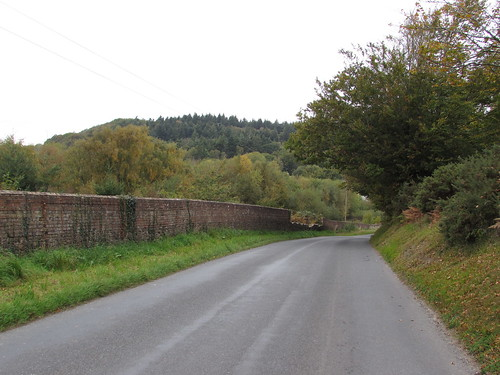 Between East Lulworth and Coombe Keynes (Dorset)