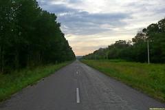 Пересекли трассу M 4 и устремились в сторону Дона. Тихий асфальт, попутные ветер, уклон. Велосипед едет просто сам!