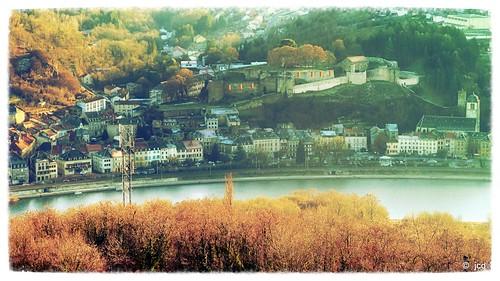 Janvier 2017 le long de la Moselle en Lorraine (57)