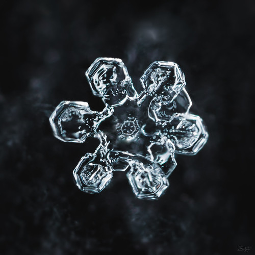 Melting snowflake