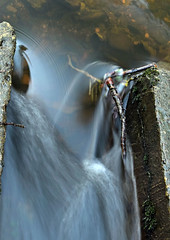 flow-between-stones (321dustymix) Tags: bothal riverwansbeck steppingstones longexposure timed blur watertrails stones