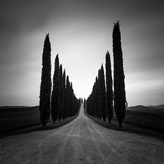 Val d'Orcia (ArztG.|Photo) Tags: tuscany italy fineart rain cypresses treees arztg|photo 2016