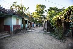 5D8_7426 (bandashing) Tags: rural village bangla house trees yard sylhet manchester england bangladesh bandashing aoa socialdocumentary akhtarowaisahmed