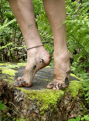 Building foot strength (Barefoot Adventurer) Tags: barefoot barefooting barefooter barefoothiking barefeet barefooted baresoles barfuss naturalsoles naturallytough nature connected strongfeet anklet arches barefootwalking healthyfeet hardsoles earthsoles earthing earthstainedsoles balance strongarch hiking happyfeet woodlandsoles woodland tiptoe ankles stretching flexiblefeet livingleather leathersoles leathertoughsoles instep forestsoles forestwalk wrinkledsoles