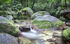 Daintree Rainforest (Sarmu) Tags: mossmangorge queensland australia au 2560 1600 1920 1200 1680 1050 720 1080 720p 1080p highresolution resolution highdefinition hd ws widescreen wallpaper wallpapers sarmu landscape nature view outdoor unesco worldheritagesite rainforest digitalblending 2016 daintree daintreerainforest daintreenationalpark nationalpark wettropicsofqueensland cairns qld northqueensland waterfall rock creek