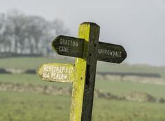 Signpost (l4ts) Tags: landscape staffordshire peakdistrict whitepeak alstonefield hownarrowdale mist signpost muddy grattonhill drystonewalls