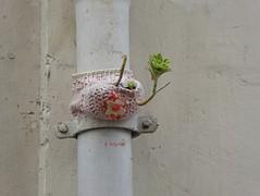 Graff in Paris - by ? (brigraff) Tags: streetart yarnbombing laine tricot plante paris brigraff