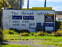 The Things Which I Have Seen (Steve Taylor (Photography)) Tags: art graphic sign building bench seat earthquake 22february2011 demolition quake sad newzealand nz southisland canterbury christchurch flower grass poppy spring sunny sunshine