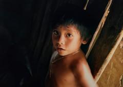 Ojos en la selva (Bob Stolen (robelx)) Tags: indígena caribe quintanaroo maya méxico nikon