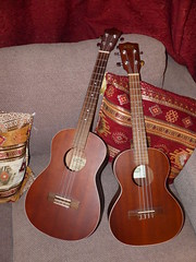 February was the month of the ukuleles (DavidCooperOrton) Tags: 365the2017edition 3652017 day58365 27feb17