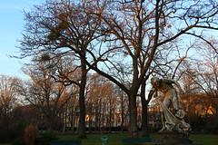 Paris - Jardin du Ranelagh (corno.fulgur75) Tags: paris parís parigi parijs paryż paříž iledefrance france francia frança frankrijk frankreich frankrig frankrike francja francie 16earrondissement december2016 lamuette jardinduranelagh ranelagh jardin garden winter hiver