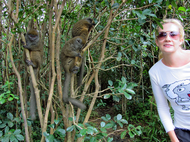 Madagascar3 - 090