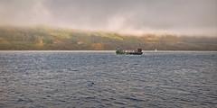 Seal Spotting.. (Harleynik Rides Again.) Tags: seal spotting kylerhea narrows glenachulish cloudporn mist dawn glenelg isleofskye mistyisle nikondf harleynikridesagain inexplore explore