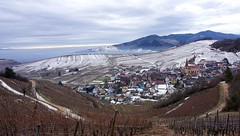 Niedermorschwihr (Philippe Haumesser Photographies (+ 4000 000 views) Tags: village nature paysage paysages landscape landscapes montagne montagnes mountain mountains vigne vignes vignoble vineyard vineyards brouillard fog horizon nuages clouds neige snow hiver winter église church chemin way niedermorschwihr alsace elsass vosges hautrhin 68 sonyilce6000 sonyalpha6000 sony 169 2017