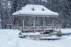 Peterborough Winter Pagoda (superdavebrem77) Tags: scenic winter