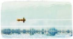 Mirrored (PattyK.) Tags: ioannina giannena epirus ipiros greece grecia griechenland hellas ellada balkans europe europeanunion amateurphotographer snapseed ιωάννινα γιάννενα ήπειροσ βαλκάνια ελλάδα ευρώπη whereilive lakepamvotida pamvotida ioanninalake παμβώτιδα λίμνη ηπόλημου όμορφηπόλη reflection mirrored inthelake αντανάκλαση september 2012 reflectionsinthewater