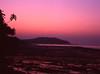 s002-(2) (sxediy) Tags: india goa film mamiya mamiya645 sekor 8019 sekor8019 645pro art artistic amazing beauty