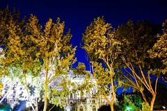 Nuit (p.mamede) Tags: voyage férias viagens vacances lumière lights luzes notredame france paris flâner night noite nuit