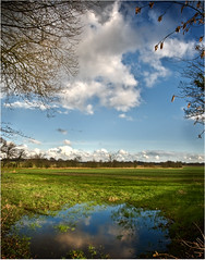 RAIN SOAKED LAND (Des Hawley.) Tags: uk england sky cloud tree nature water pool beautiful field grass reflections landscape cool nikon cheshire outdoor gorgeous farming andromeda serene hedgerow d300 lymm platinumpeaceaward coth5 deshawley cothgoldgallery thegalaxyhalloffame thegalaxystars