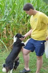 Matej sa psima (nesikaj1) Tags: august podravina kolovoz ljeto2015 koddianeinikole vlaislav