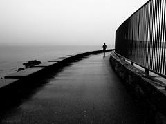 sometimes it rains (bluechameleon) Tags: ocean blackandwhite bw man water rain fog vancouver fence reflections alone stormy runner secondbeach bluechameleon artlibre sharonwish bluechameleonphotography