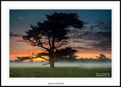 Sunset in the Parks (barnowls07) Tags: sunset mist fog nikon ngc ceder neilbarkerphotography
