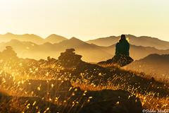 Awakening (DobriMv) Tags: light mountain nature girl silhouette yellow female sunrise landscape golden nationalpark europe sitting outdoor relaxing bulgaria rila balkans eastern ridges meditative kapa popova