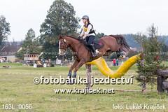 163L_0056 (Lukas Krajicek) Tags: military czechrepublic cz kon koně vysočina vysoina southbohemianregion blažejov dvoreček všestrannost dvoreek