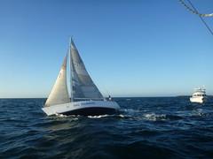 Airborn (Figgles1) Tags: club twilight sailing iii sail fremantle airborn fsc pipedream pipedreamiii fremantlesailingclub p1170019