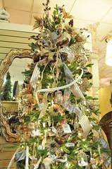 It's Beginning To Look A Lot Like Christmas (EDWW day_dae (esteemedhelga)) Tags: santa christmas xmas holiday snow stockings st bells festive reindeer snowflakes snowman globe poinsettia illuminations garland holly scrooge nicholas elf wreath evergreen ornaments angels tinsel icicle manger yule santaclaus mistletoe nutcracker cheer jolly christmastrees happyholidays bethlehem merrychristmas bauble rejoice goodwill partridge elves yuletide caroling holidayseason carolers seasongreetings merrifieldgardencenter edww christchild daydae esteemedhelga jesus hohoho gingerbread wrappingpaper giftgiving joyeuxnoel northpole holidaydecornativity sleighride artificialtree candycane feliznavidadfrostythesnowman kriskringle sleighbells stockingstuffer wisemen twelvedaysofchristmas winterwonderland