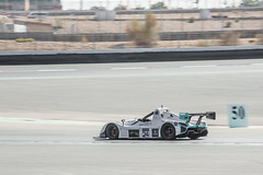 Dubai Race-28 (Willy_G91) Tags: car race racing uae dubai autodrome track adrenaline 2015 voituredecourse united arab emirates unitedarabemirates motor sports club radical cup ludoloffreda romainlutter nikon d610 fx