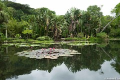 Q-1030382.jpg (aetse) Tags: brazil rio de 2015 janerio riodejanerio