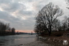 Ticino (andrea.prave) Tags: park wild sky italy parco milan nature water gua clouds ro river ticino agua eau wasser nuvole wildlife fiume himmel wolken natura rivire cu ciel cielo nubes nuvens nuages  fluss acqua  vatten vann   elv nehir    flod            cuggiono  castellettodicuggiono