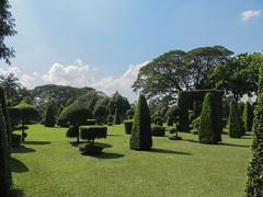 "Yangon: le parc Kandawgyi <a style=""margin-left:10px; font-size:0.8em;"" href=""http://www.flickr.com/photos/127723101@N04/23485892566/"" target=""_blank"">@flickr</a>"
