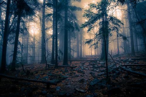 Świętokrzyskie mountains, Poland