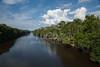 RIO ALALAÚ, Divisa dos Estados Amazonas e Roraima. (TUCUPI IMAGENS) Tags: alalau amazon amazônia arlivre daylight divisadeestados divisadoamazonascomroraima divisanatural florestaasmargensdorioalalaú luzdodia rio rioalalau água águaderio águadoce